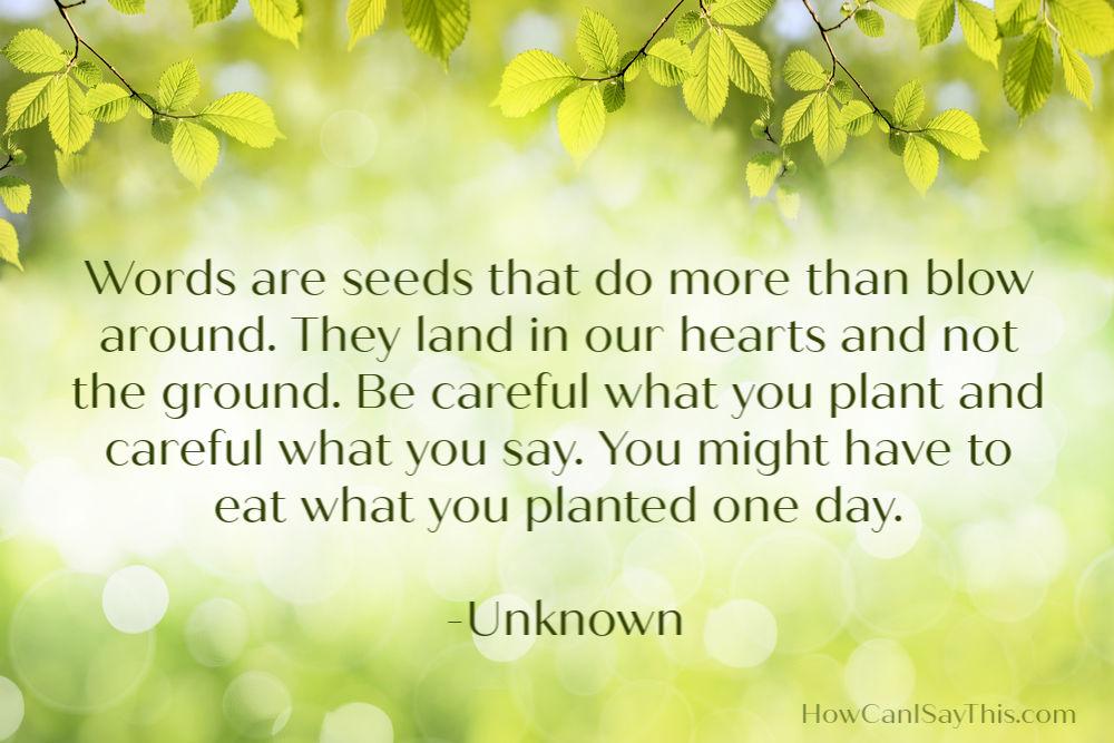 Words Undermine Effectiveness Seeds